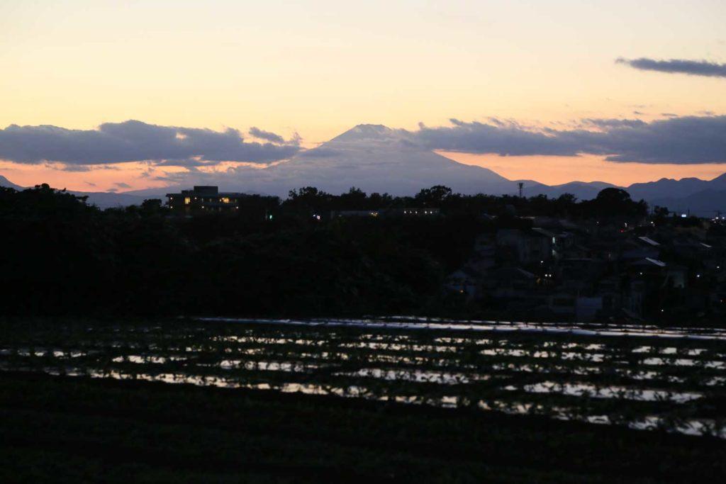 夕暮れの畑